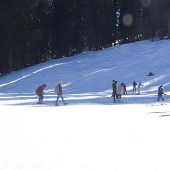 Unforgettable Shimla Kinnaur Tour