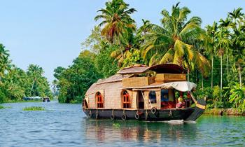 Kerala Wildlife Backwater and Beach Tour