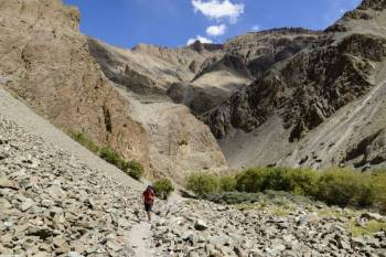 Zanskar Valley Trek Tour