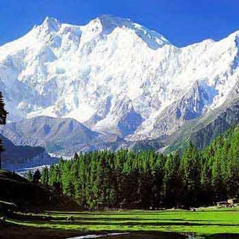 4N5D Srinagar - Sonmarg - Gulmarg & Pahalgam Tour