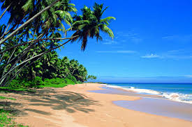 Enjoy Sri Lanka Tour