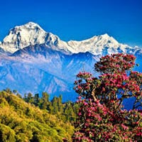 Picturesque Nepal