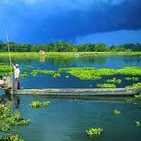 Assam Wildlife & Heritage Tour