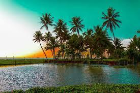 Kerala Package Tour from Kolkata