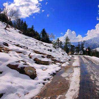Scenic Shimla Manali Tour