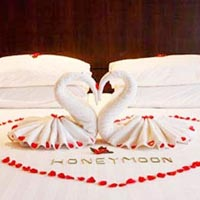 Honeymoon Packages IV Tour