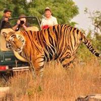 Rajasthan Wih Ranthambore Tour