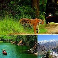 Charming Kumaon Package