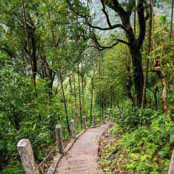 Assam Meghalaya Agartala Manipur Nagaland Tour