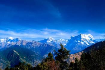Beauty of Himalaya Tour