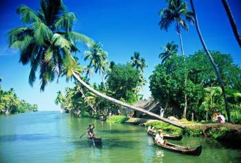 Wildlife and Backwater Honeymoon Tour