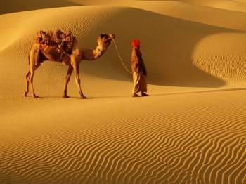 Ravishing Rajasthan Package