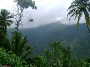 Munnar – Thekkady – Alleppey – Kumarakom – Kovalam Tour