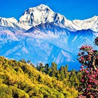 Honeymoon in Nepal Tour