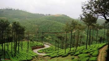 Mysore, Coorg, Wayanad 7 Days