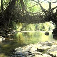 Meghalaya - Kaziranga - Nameri Tour