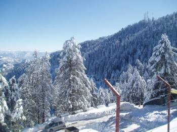 Himachal Package 12 Days