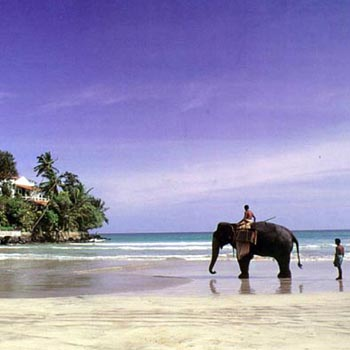 Exotic Sri Lanka Tour