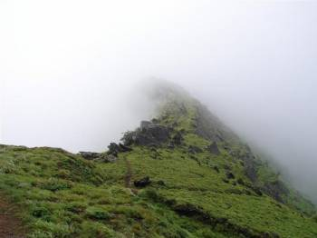 Chikmagalur Weekend Tour