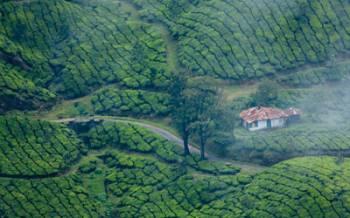 Kerala ( 7 Days) Tour
