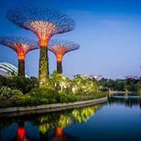 Tour Package Of Singapore