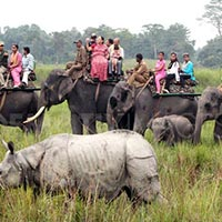 Gwathy & Assam Tour