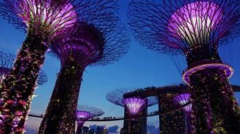 Singapore & Bintan Getaway