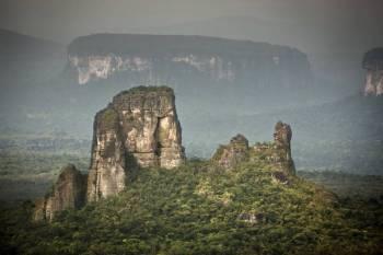 Amazonian Adventure Tour