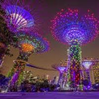 6 night 7 days singapore with cruise Tour