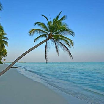 Lakshadweep Honeymoon Tour