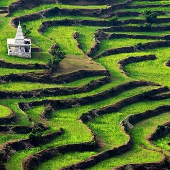 Uttaranchal Tour 7 Day