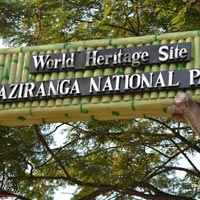 Wildlife Tour - Kaziranga Tour