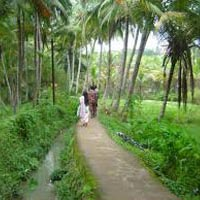 Treasures of Kerala Tour