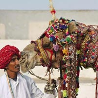 Rajasthan Historical Palaces Tour