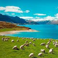 Self Drive - Seven Colors Of New Zealand Tour