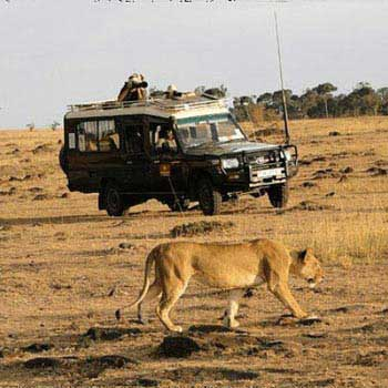 Kenya Safari Packages