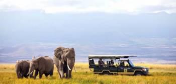 Africa – Amazing African Safari