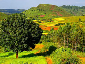 2 N 3 D Only Araku Tour