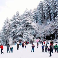 Himachal Tour With 5 Adults