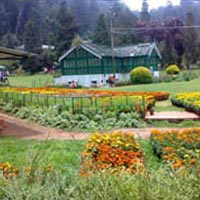 South India Tour Ooty Tour Package