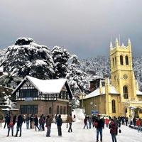 Shimla + Manali Tour