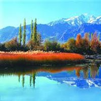 Magical Srinagar Tour.