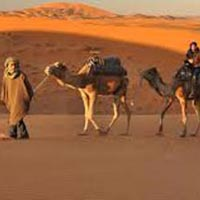 Desert Safari Of Rajasthan