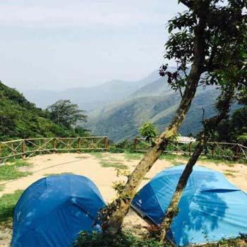 Jungle Trek & Camping Tour