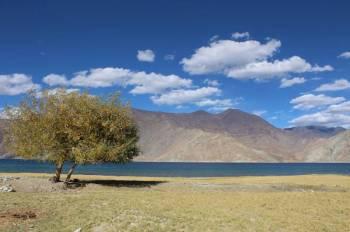 Jounrey to Ladakh Tour Pakage