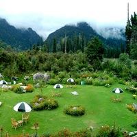 Himachal Delight Chandigarh - Manali Tour