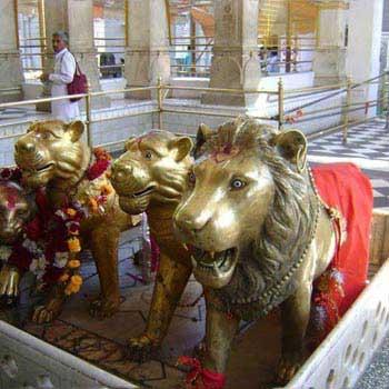 Nau 9 Devi Darshan Package