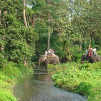 North Bengal Dooars + Kalimpong Tour