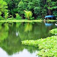Coorg 3 Nights/4 Days Tour