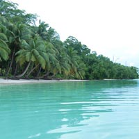 Andaman 5days - 4nights Tour